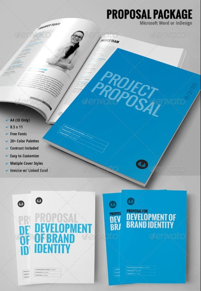 30+ Page Proposal Template
