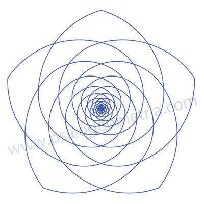 geometria%20sagrada%20-%20ley%207%20de%208%20pentaflor.jpg