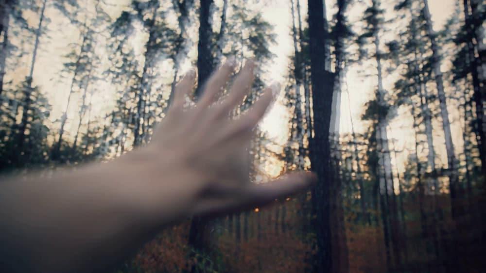 ¿Qué son las alucinaciones?