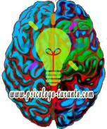 emisferi-creatività-dr-zinzi