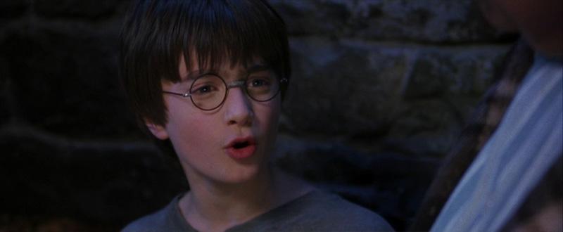 Harry piccolo - Harry Potter e la Pietra Filosofale - Rilettura del quarto capitolo - Psicologorroico