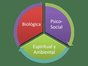 biopsicosocial-depresion