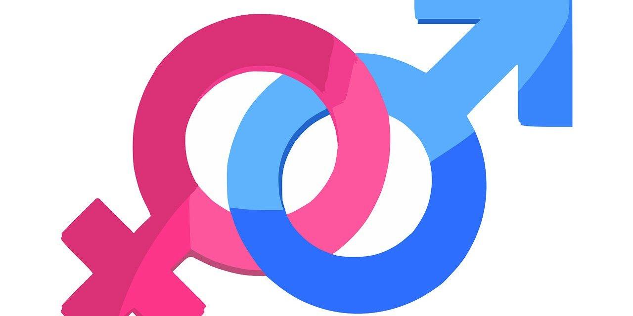 LA EDUCACIÓN SEXUAL: ¿QUIÉN LE PONE EL CASCABEL AL GATO?