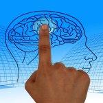 NEUROEDUCACIÓN: LA AGENDA DEL FUTURO DE LA EDUCACIÓN