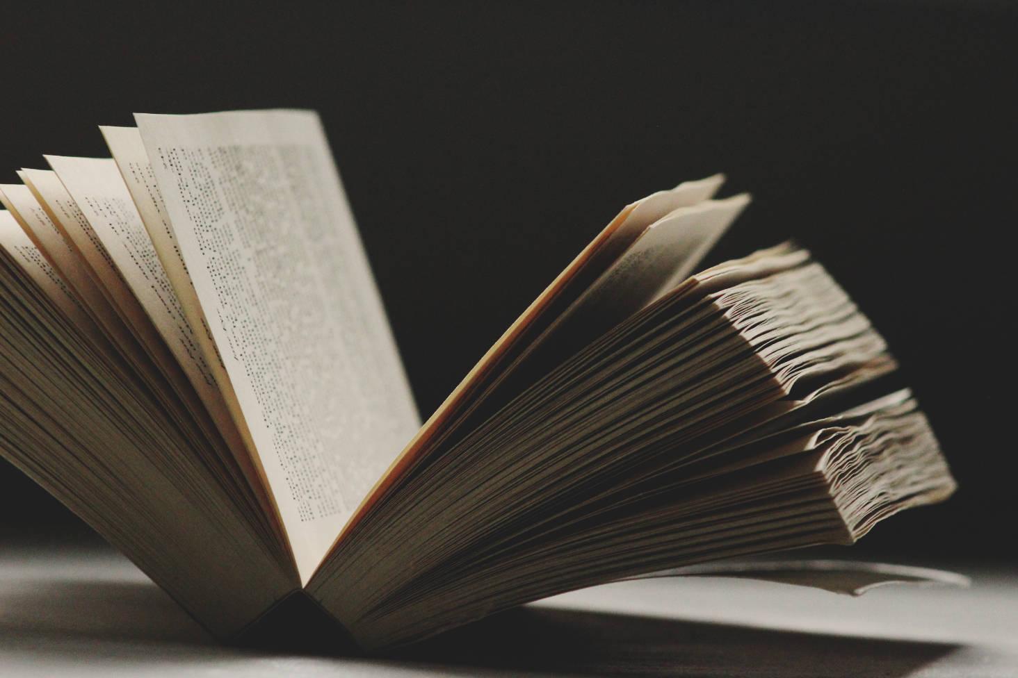 Intervista a un uomo di lettere nella Giornata Mondiale del Libro