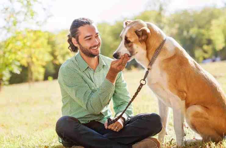 Čovek i pas