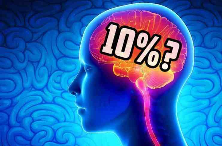 kapacitet mozga