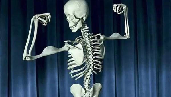 Neden Kemiklerimiz Var? Kemikler Ne İşimize Yarar?