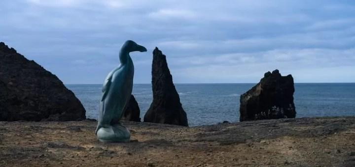 Nesli Tükenmiş 7 Deniz Kuşu Örneği