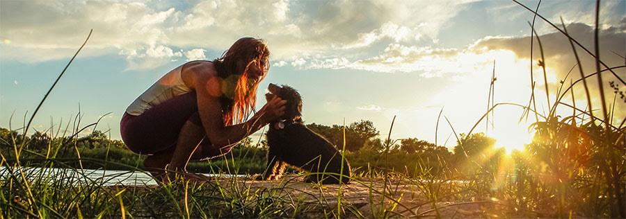 Dogs & Ayurveda
