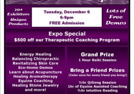 Healing Holidays Expo at The Meta Institute in New Hope