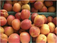 Healthy Fruits in Winter 8