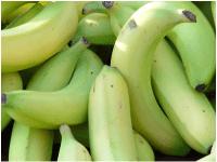 Healthy Fruits in Winter 7