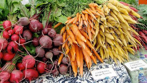 Spro Gard Organic Vegetables