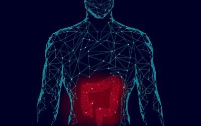 Microbiota Intestinal e Transtornos do Humor
