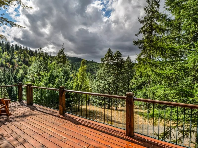 deck trees nature