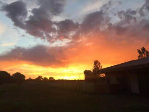 Kristy sunset