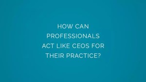 How can professionals act like ceos for their practice?