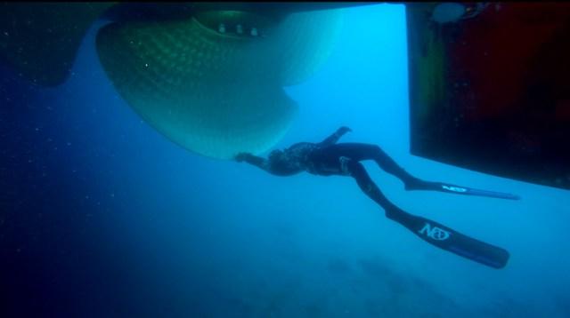 Nox Diving sous un bateau