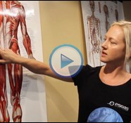 Quick Tip: Releasing the Gluteus Medius for a Tight Lower Back