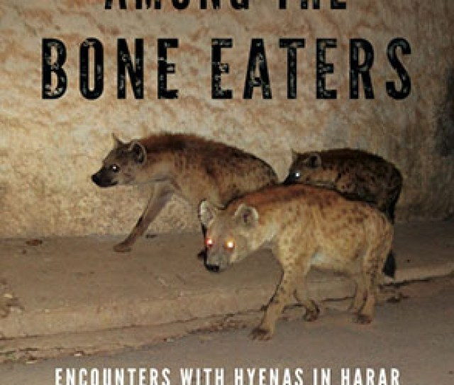 Cover Image For Among The Bone Eaters Encounters With Hyenas In Harar By Marcus Baynes