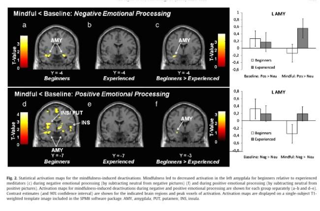 Atténuation émotionnelle par la méditation