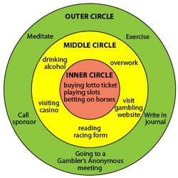 Three Circles Exercise three circles resembling a target with various healthy and unhealthy behaviors written in different layers.
