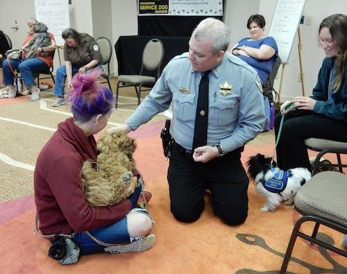 Service Dog Laws FAQ: Service Dog vs ESA vs Therapy Dog—and more!