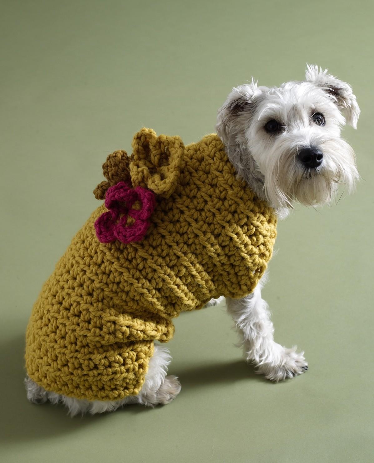 Вязание для собак в картинках