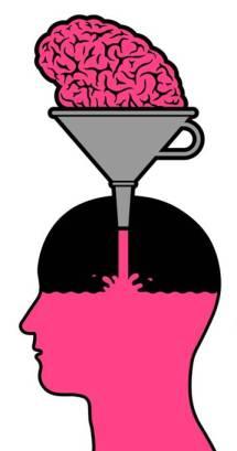 brain-funnel