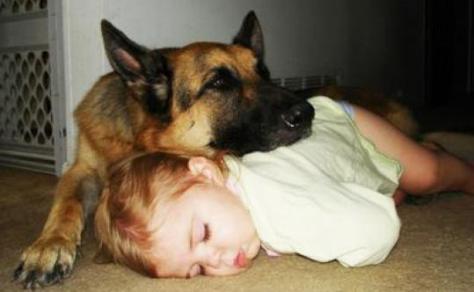 Spánkový knokaut4