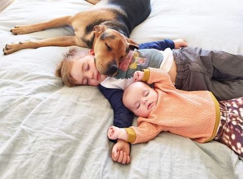spánkový epidemia