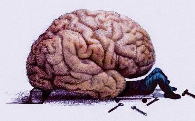 Νέα έρευνα αποδεικνύει ότι δεν υπάρχει «αρσενικός ή θηλυκός εγκέφαλος».