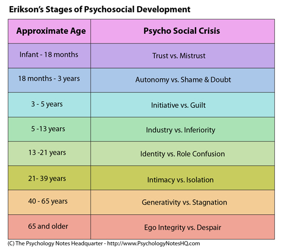 picture relating to Printable Erikson's Stages of Development referred to as What are Erik Eriksons Degrees of Growth?