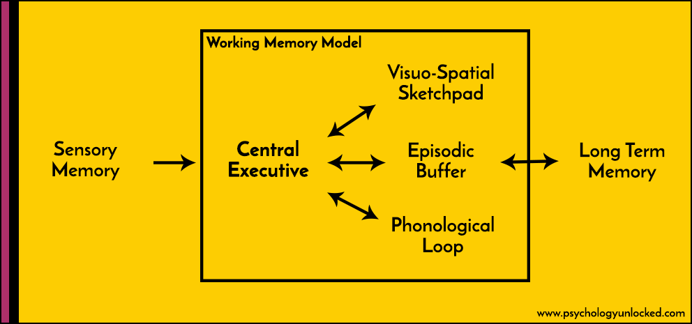 Working Memory Model Diagram