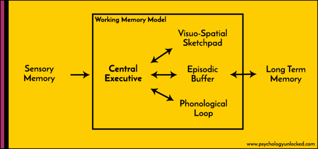 Working Memory Psychology Unlocked