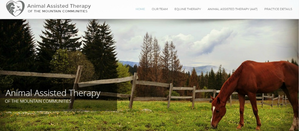 PRIVATE PRACTICE WEBSITE DESIGN FOR SMALL BUSINESS