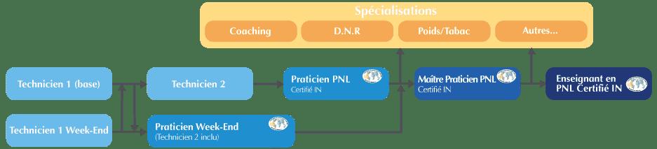 organigramme-pnl-complet-v2
