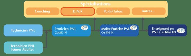 formation DNR