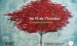 Recueil de témoignages de l'association pour les troubles bipolaires le Funambule