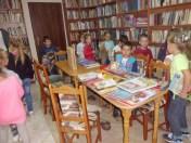 Biblioteka8_08