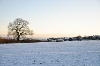 Snow near Dawlish