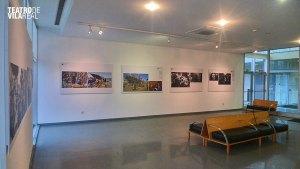 A exposição encontra-se no Teatro de Vila Real até 29 de fevereiro/ Foto: Direitos Reservados