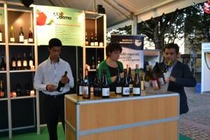 As provas de vinho foram outro dos momentos do certame / Foto: Salomé Ferreira