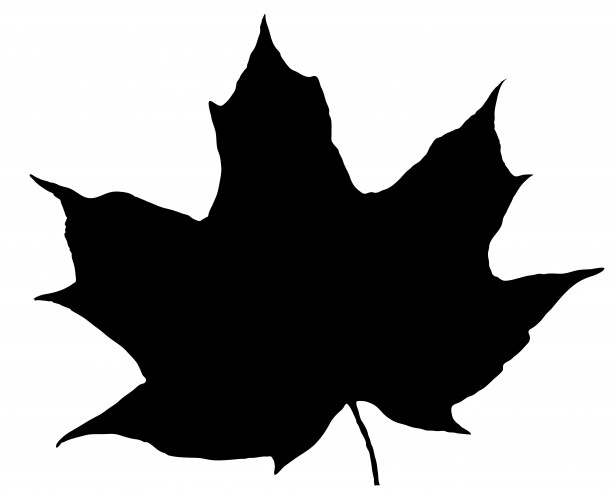 Image result for leaf silhouette