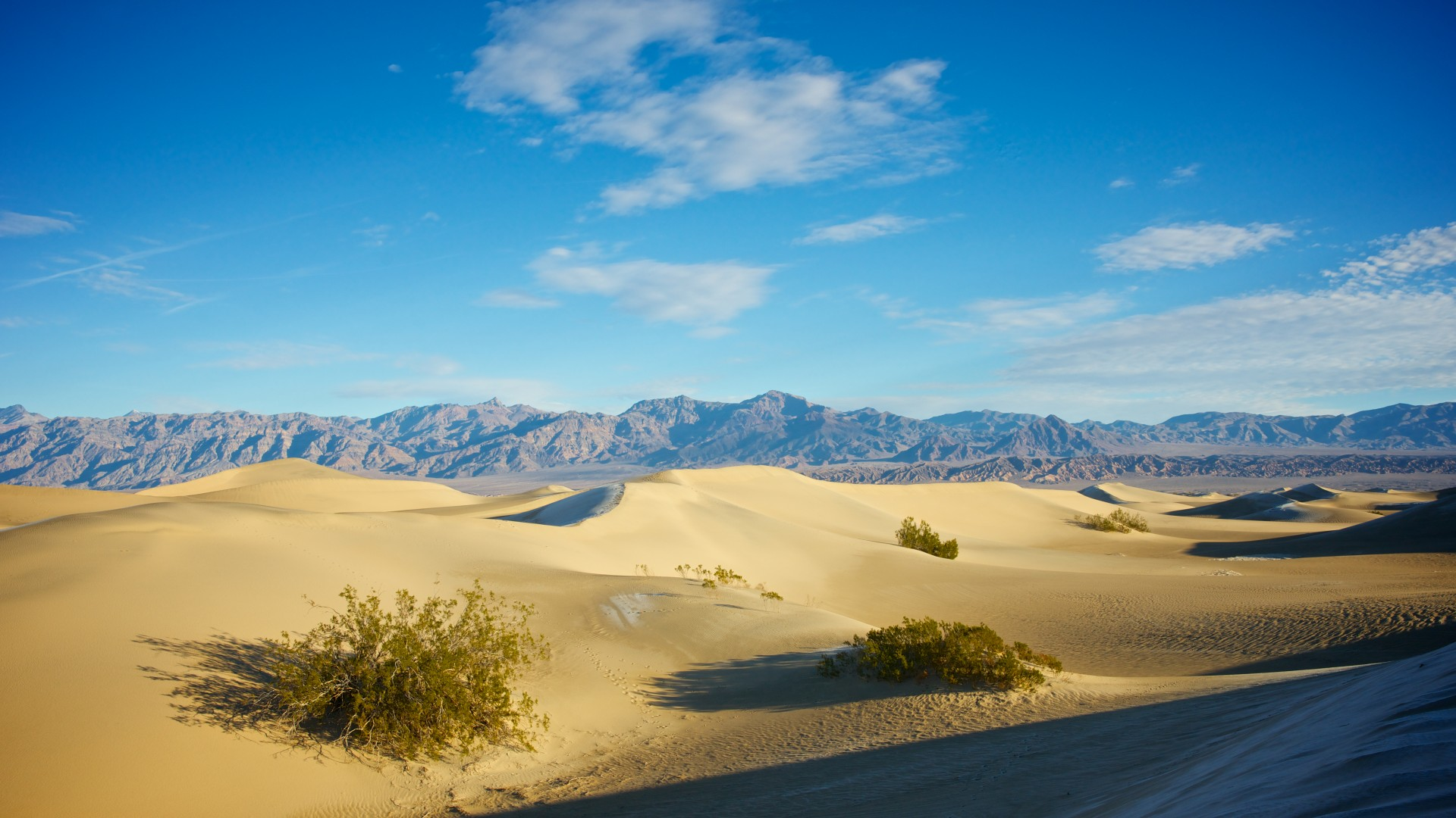 Sand Dune near Stovepipe Wells in Death Valley National Park, Parks and Recreation Month