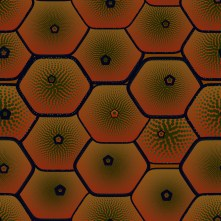 Image result for hive Hexagon painting
