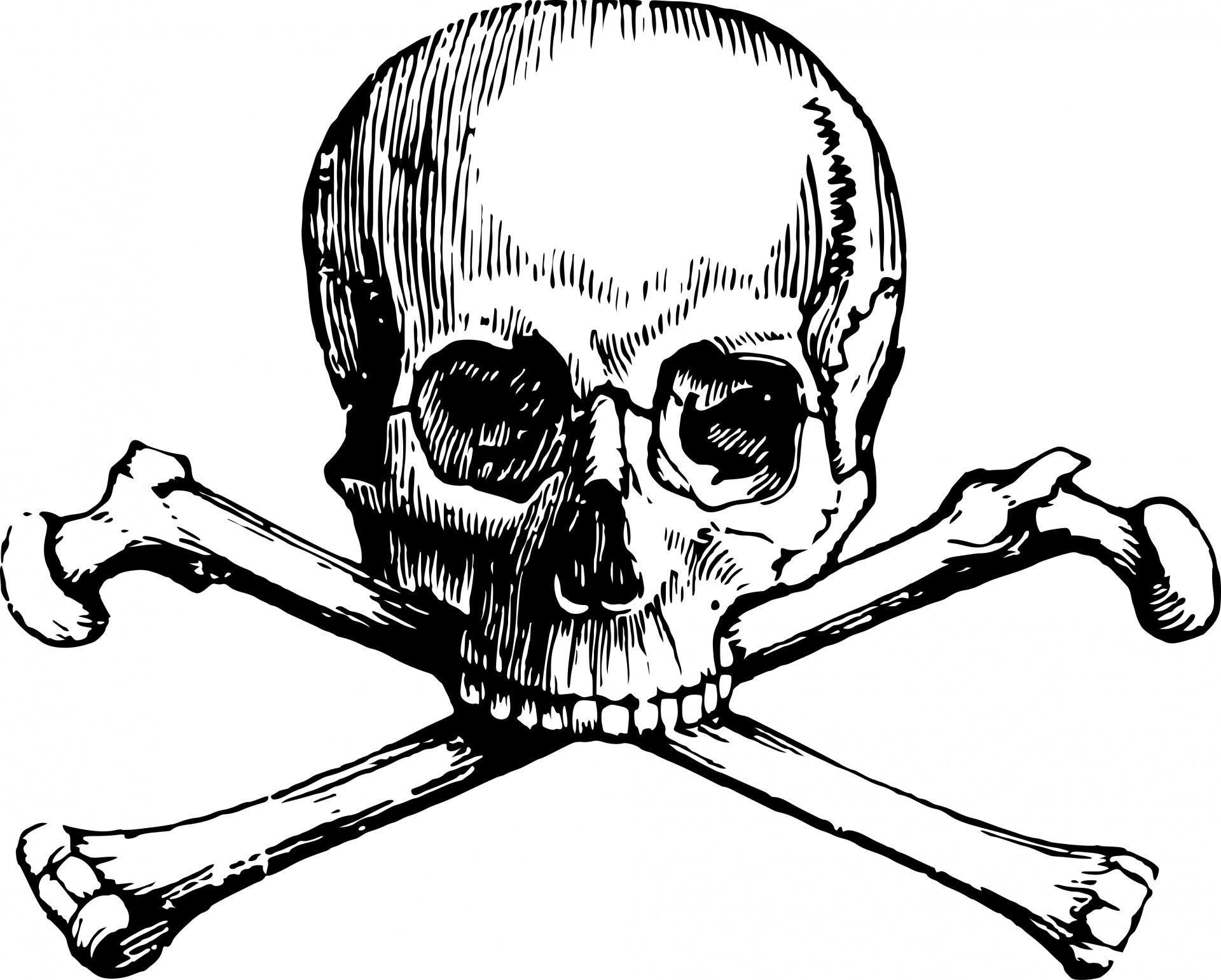 Skull And Crossbones Free Stock Photo