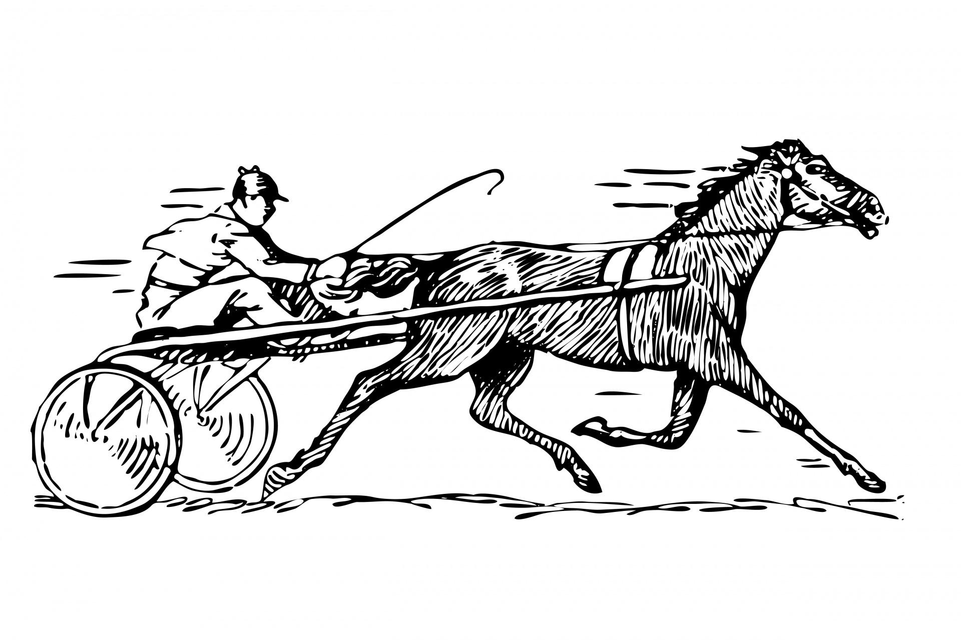 Horse Racing Clipart Illustration Free Stock Photo