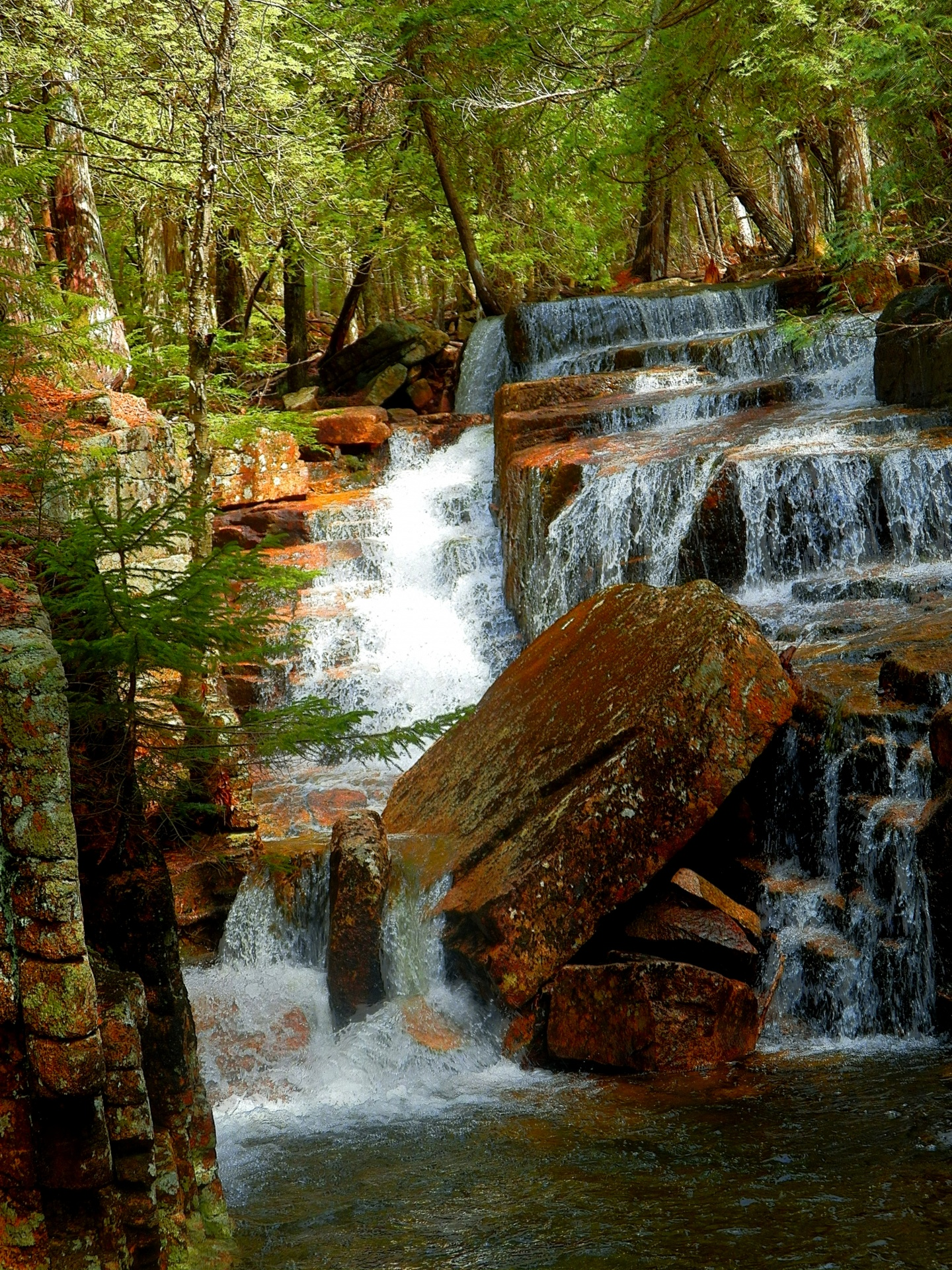Acadia National Park, National Parks, Parks and Recreation Month